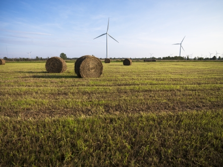 View of a hay field with wind turbines at the background. photo