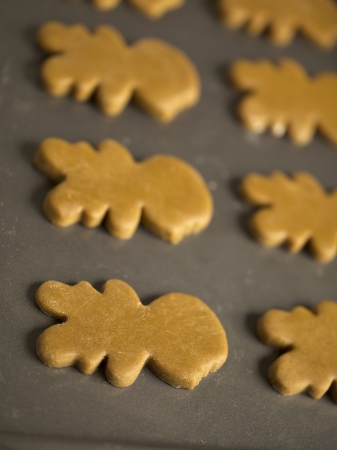 Close-up of gingerbread cookies on baking tray photo