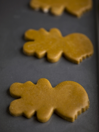 cookie sheet: Raw ginger bread man cookies on a cookie sheet