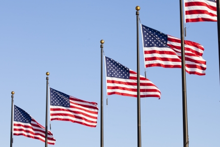 A number of USA flags in the wind Imagens