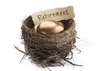 Detailed shot of shiny golden eggs with retirement paper in animal nest against white background. 版權商用圖片