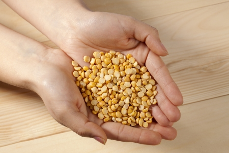 yello: Close-up cropped shot of a person holding yellow lentil beans. Stock Photo