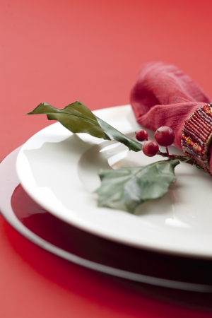 Close-up cropped shot of a plate with leaves, red berries and table cloth. Stock Photo - 16995134