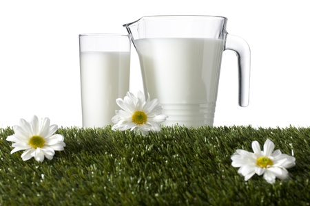 Pitcher and glass of milk laid in grass with daisies