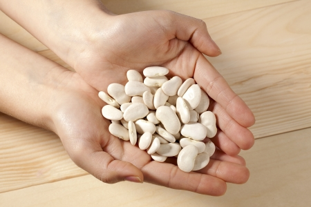 White beans on hands in a close-up image Stock Photo - 16995123
