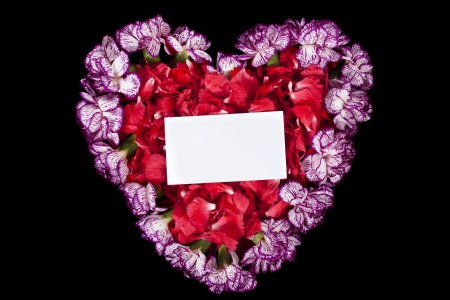 Image of red and purple carnation flower forming a heart with an empty card on the top