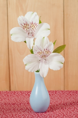 White flowers on a vase in a wooden background photo