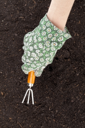 Close-up image of a hand with rake cultivating the soil Stock Photo - 17084830