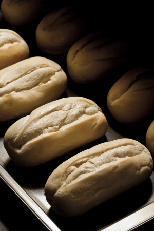 Fresh oven baked bread over a tray rack