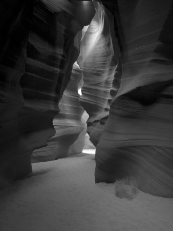 Black and white view of canyon antelope. photo