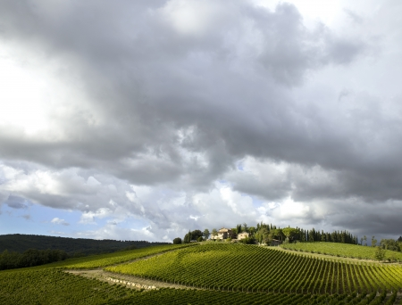 Dramatic clouds in the fall over a Tuscan wineyard. photo