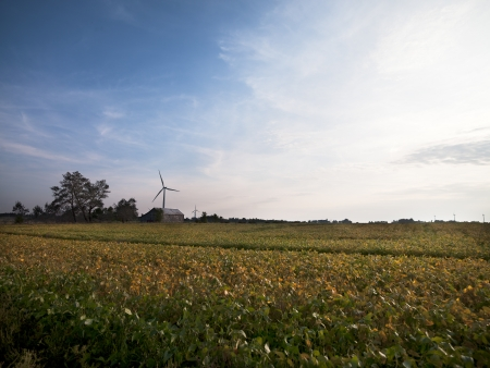 Wind turbine in a field with sky in the background. photo