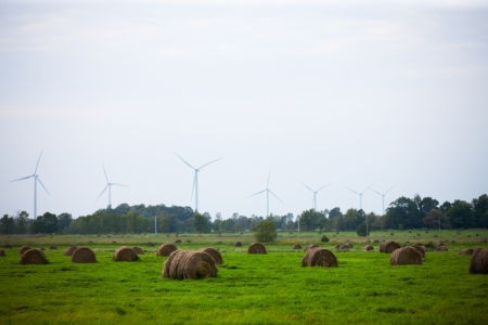 Hay rolls with wind turbines in the field with clear sky in the background. Stock Photo - 17148258