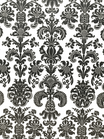 Floral black and white floral pattern wallpaper in a macro image. Stock Photo - 17149936