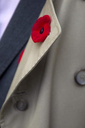 detailed shot: Extreme detailed shot of a red fake flower on mens coat collar.