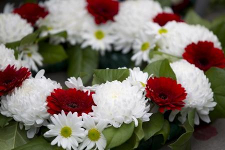 arreglo floral: Close-up shot de corona de flores rojas y blancas en el monumento a los ca�dos.