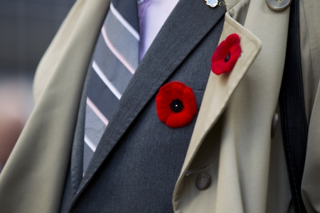 remembrance day: Extreme close-up shot of red flower attached on mens suit.