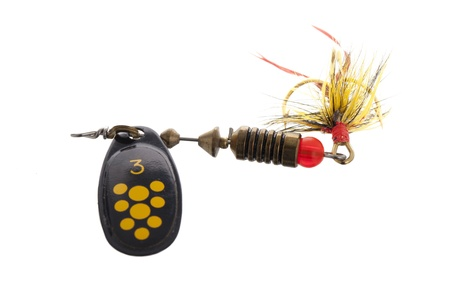 Close up image fishing bait on white background Stock Photo - 17140508