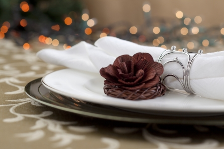 dinne: Image of flower with table napkin