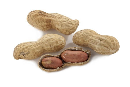 earthnuts: Close up image of fresh organic peanuts against white background Stock Photo