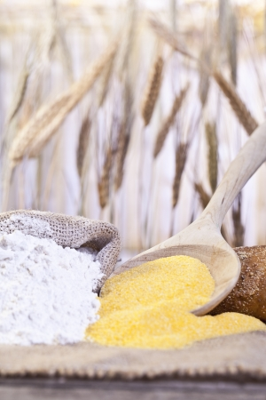 Close-up image of scoop of maize flour and a sack of wheat flour photo