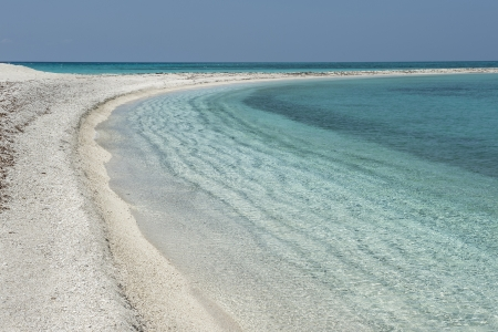 dry tortugas: Lovely beach of Dry Tortugas