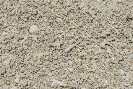 dry tortugas: Beach sand background in Dry Tortugas island Stock Photo