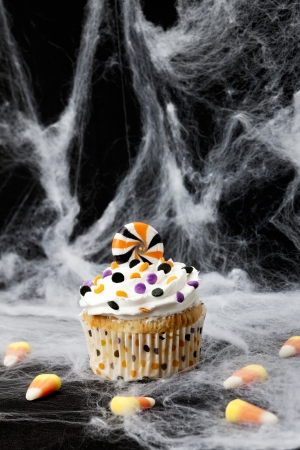 Halloween Cupcake on a spider web photo