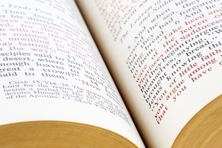 detailed image: Detailed image of open holy bible.