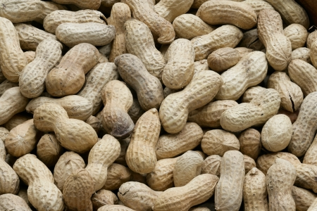 goober peas: Close-up group of fresh peanuts with shell Stock Photo