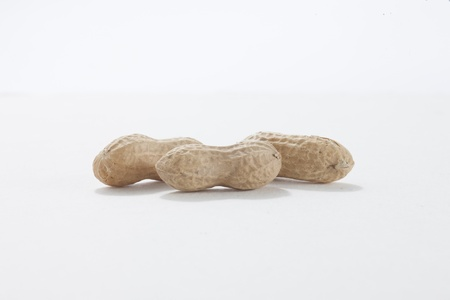 monkey nuts: Image of three monkey nuts against white background