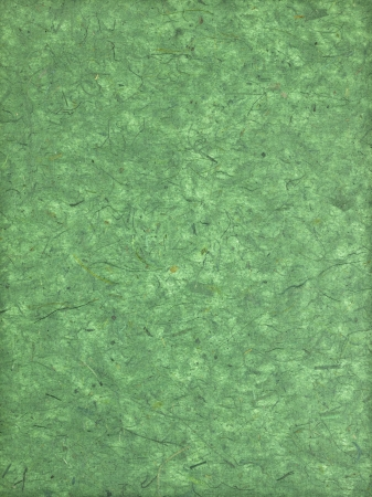 Green wallpaper in a macro image Stock Photo - 17171332