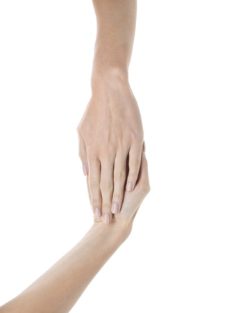 Image of female hands against white background Stock Photo - 17182733