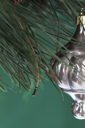 refle: Cropped image of Christmas bauble and Christmas tree against green background.