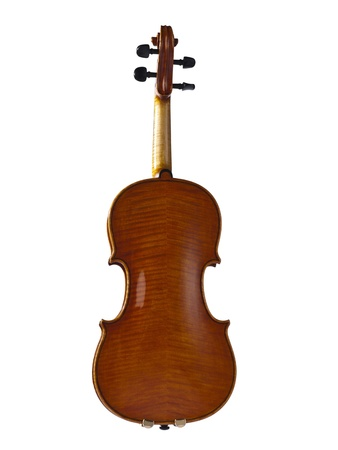 Image of back of a violin against white background