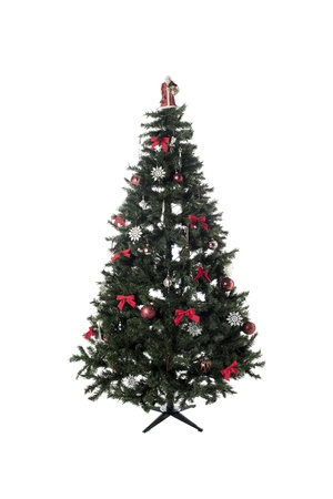 Portrait of a small Christmas tree isolated on a white background Stock Photo - 17187260