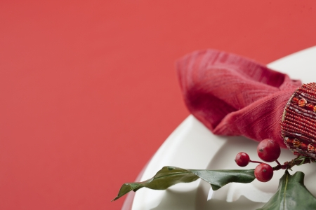 Red berries and napkin on the plate photo