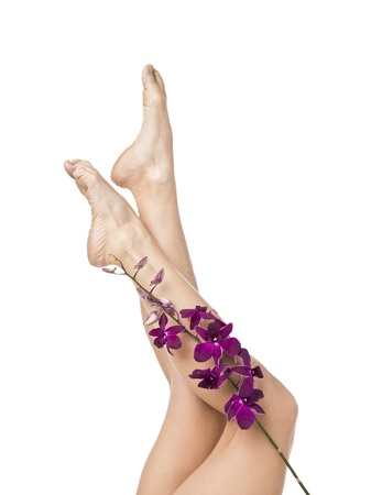 A sexy leg of a woman with flowers on the side on a white background Stock Photo - 17185494