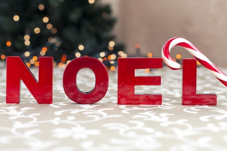 Close-up shot of red noel word and candy cane. Stock Photo - 17245069