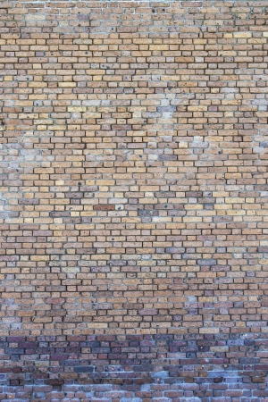 Close-up image of an ancient brick wall, Dry Tortugas photo
