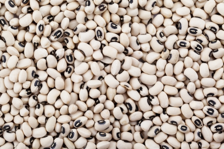 Black eyed pea in a background image photo
