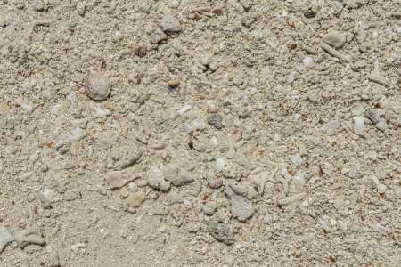 dry tortugas: Horizontal image of rocky beach sand taken in Dry Tortugas Stock Photo