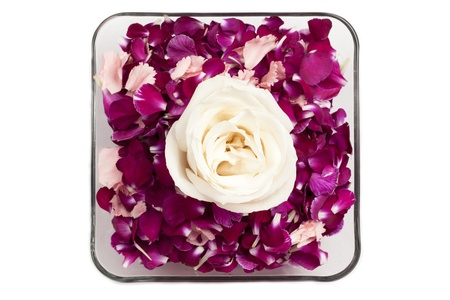 Overhead shot of a clear bowl with carnation petals and white rose on the top