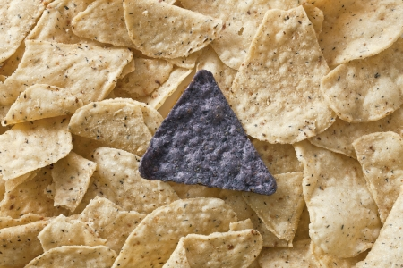 nibbles: Close up image of blue nachos in heap of tortilla chips
