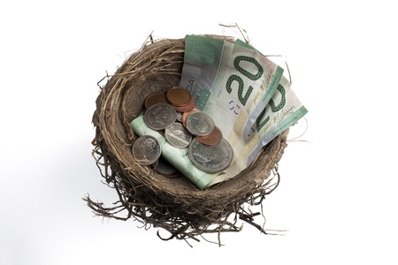 Detailed shot of bird's nest with paper currency and  coins over white background. Stock Photo - 17251288
