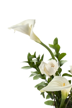 Calla lilies and rose in a white background