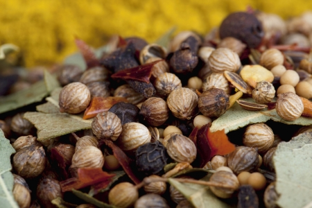 A close up image of a coriander seeds with leafs Stock Photo - 17252501
