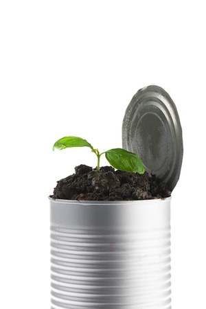 Close-up shot of a small plant in tin can against white background. photo