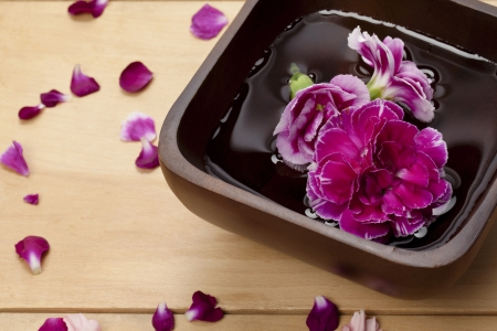 Cropped image of a black container with water with a purple carnation inside and surrounded by flower petals