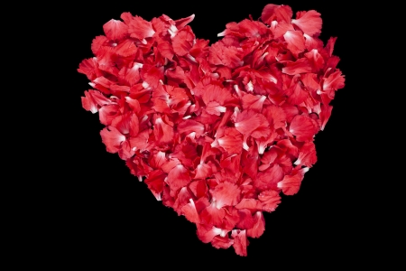 Image of a heart shape red carnation petals on a dark background Stock Photo